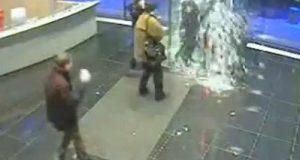videos de locuras